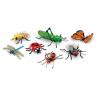 Jumbo hmyz